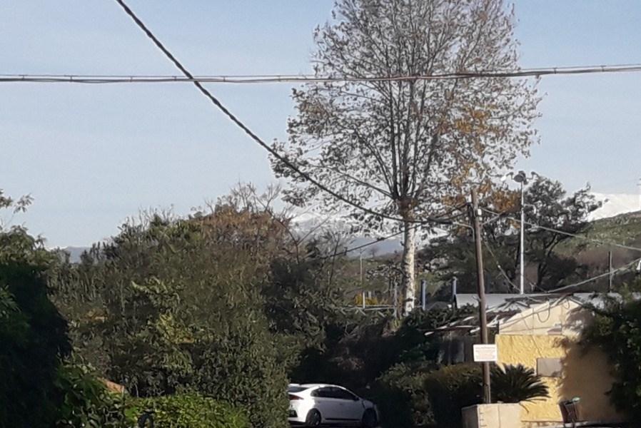 View of the resort Nofi Gonenl